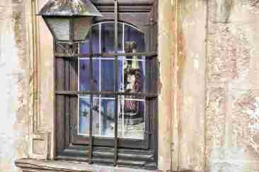 Virgen de la catedral-ventana_002